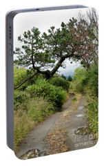 Portable Battery Charger featuring the photograph Country Road. New Zealand by Yurix Sardinelly