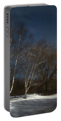 Country Roadside Birch Portable Battery Charger