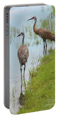 Couple Of Sandhills By Pond Portable Battery Charger