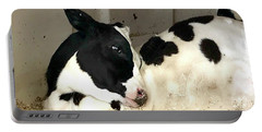 Portable Battery Charger featuring the photograph Cow Cutie by Monique Faella