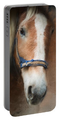 Portable Battery Charger featuring the photograph Cow Pony by Robin-Lee Vieira