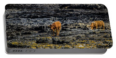 Cows On The Rocks Portable Battery Charger