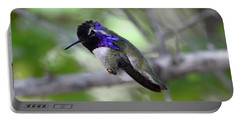 Coy Costa's Hummingbird Portable Battery Charger
