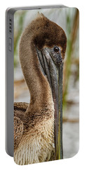 Portable Battery Charger featuring the photograph Coy Pelican by Jean Noren