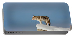 Coyote At Overlook Portable Battery Charger