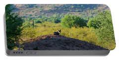 Coyote Hill Portable Battery Charger