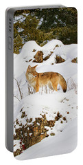 Coyote On Snowy Hill Portable Battery Charger by Steve McKinzie
