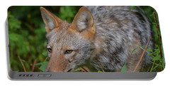 Coyote On The Hunt Portable Battery Charger