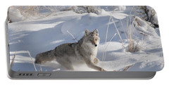 Coyote On The Move Portable Battery Charger