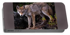 Coyote Portrait Portable Battery Charger