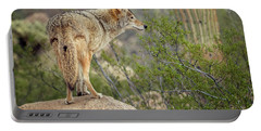 Coyote Portable Battery Charger by Tam Ryan