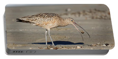 Crab Toss - Curlew Portable Battery Charger