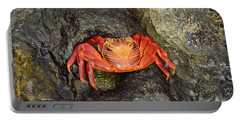 Crab Portable Battery Charger