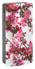 Crabapple Beauty Portable Battery Charger
