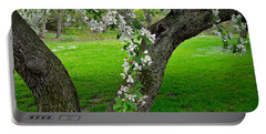 Crabapple Blossoms On A Rainy Spring Day Portable Battery Charger by Byron Varvarigos