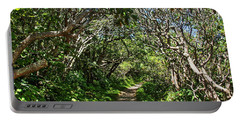 Craggy Gardens Walkway Portable Battery Charger