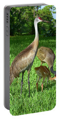 Crane Family Picnic Portable Battery Charger