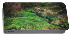 Creek - Spring At Retzer Nature Center Portable Battery Charger by Jennifer Rondinelli Reilly - Fine Art Photography