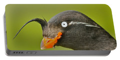 Crested Auklet Portable Battery Charger