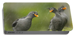 Crested Auklets Portable Battery Charger