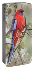 Crimson Rosella 01 Portable Battery Charger