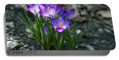 Crocus In Bloom #2 Portable Battery Charger by Jeff Severson