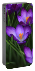 Crocus Vividus Portable Battery Charger