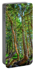 Crooked Trees Of Mt Roberts Portable Battery Charger