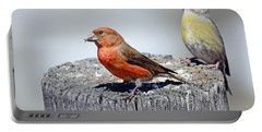 Crossbills Portable Battery Charger