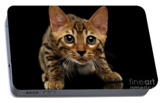 Crouching Bengal Kitty On Black  Portable Battery Charger by Sergey Taran
