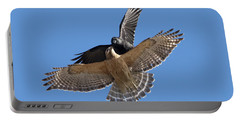 Portable Battery Charger featuring the photograph Crow Vs Hawk by Mircea Costina Photography