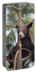 Cub In Tree Dry Brushed Portable Battery Charger