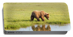 Cub Reflection Portable Battery Charger