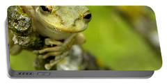 Cuban Tree Frog 000 Portable Battery Charger