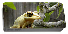 Cuban Tree Frog 001 Portable Battery Charger