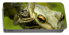 Cuban Tree Frog  Portable Battery Charger