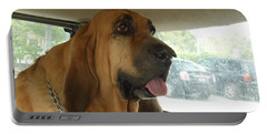 Cujo II Portable Battery Charger