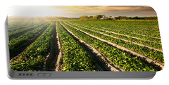 Cultivated Land Portable Battery Charger