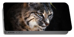 Curious Bobcat Portable Battery Charger