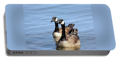 Portable Battery Charger featuring the photograph Curious Canda Geese by Sheila Brown