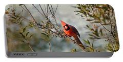 Curious Cardinal Portable Battery Charger