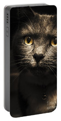 Curious Cat Watching From The Shadows Portable Battery Charger