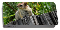 Curious Chipmunk Portable Battery Charger