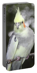 Curious Cockatiel Portable Battery Charger
