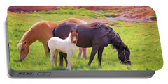 Curious Colt And Mares Portable Battery Charger