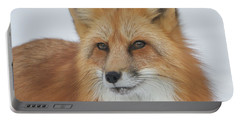 Curious Fox Portable Battery Charger