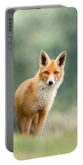 Curious Fox Portable Battery Charger by Roeselien Raimond