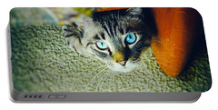 Portable Battery Charger featuring the photograph Curious Kitty by Silvia Ganora
