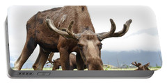 Curious Moose Portable Battery Charger