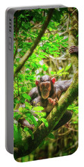Portable Battery Charger featuring the photograph Curious by Rick Furmanek